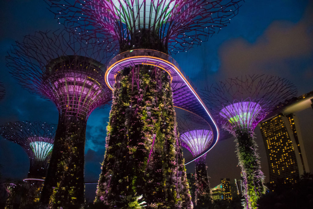 Singapore Camera Roll – Part 2