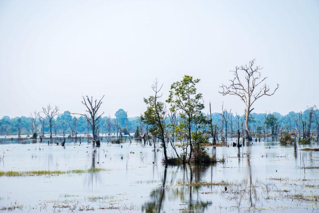 Cambodia Camera Roll – Part 4