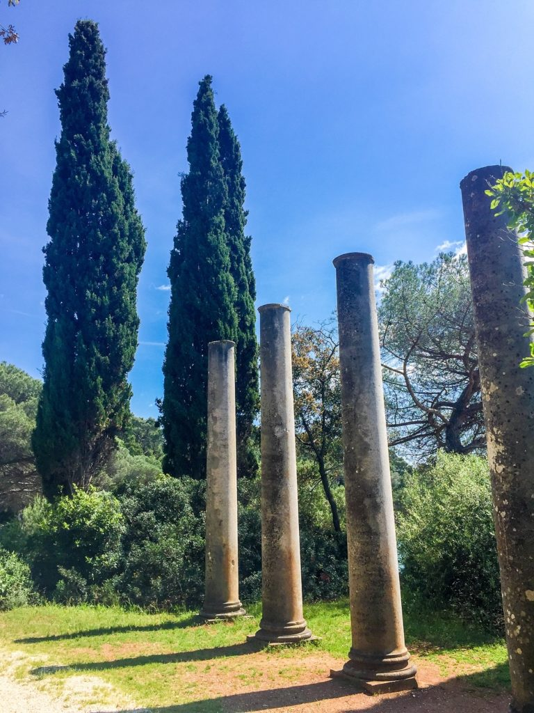 in Rovinj's park in Istria