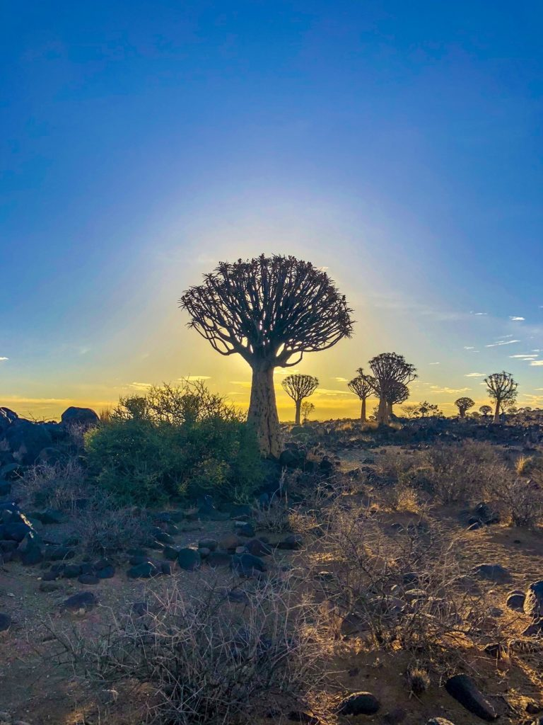 Keetmanshoop: One of the Most Unique Places in Namibia