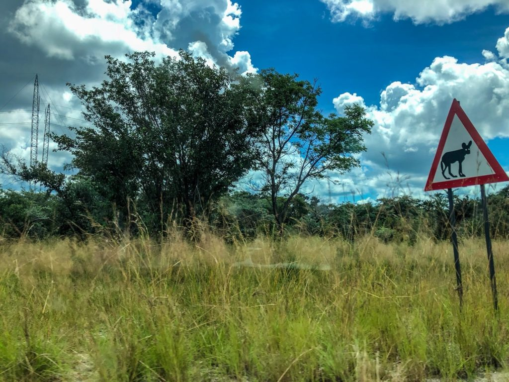 Namibia travel: a road trip through Africa in Caprivi.